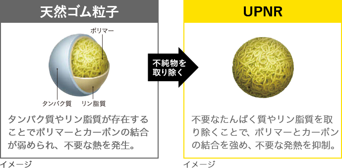 "高純度天然ゴム ""UPNR""Ultra Pure Natural Rubberの図"