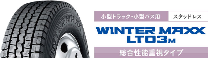 WINTER MAXX LT03M