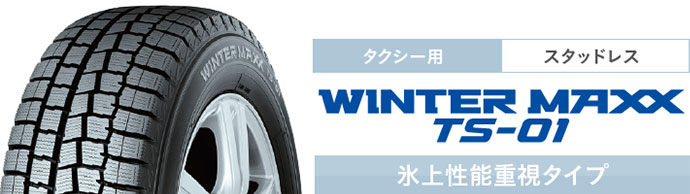 WINTER MAXX TS-01